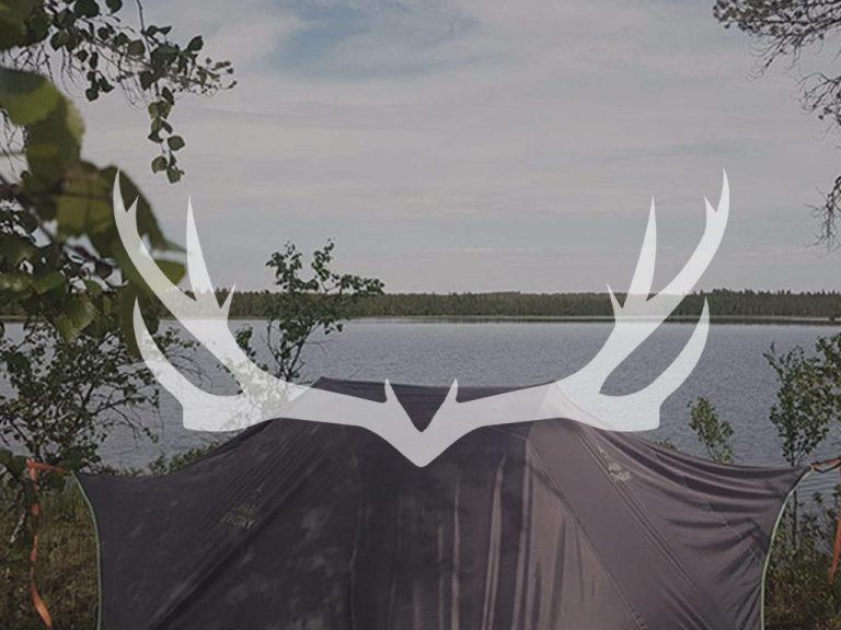 Metsakolo-placeholder-Taivasalla